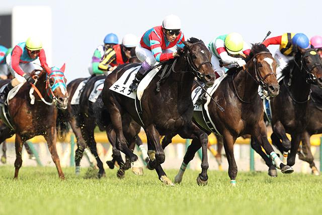 第80回日本ダービー優勝馬・キズナ