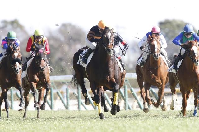 新馬戦を快勝したキタサンブラック