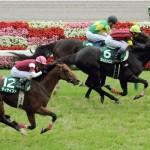 優等生の競馬でエイシンヒカリが逃げ切り勝ち(撮影:日刊ゲンダイ)