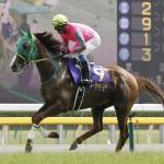 牡馬相手の重賞勝ちがあるヌーヴォレコルト(撮影:遠沢好子)