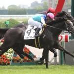 398キロの小柄な牝馬アドマイヤリードがデビュー勝ち(撮影:日刊ゲンダイ)