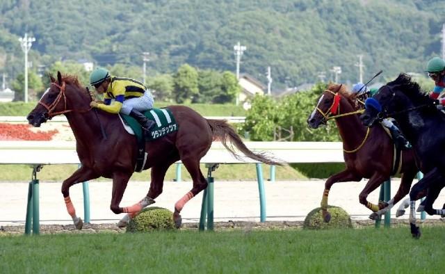 3年4ヶ月ぶりの重賞勝利を飾ったグランデッツァ(撮影:日刊ゲンダイ)